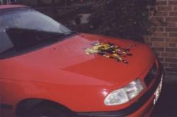 Angie Auto